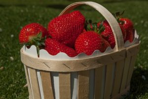 basket-strawberries-2208356_640