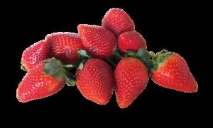fruit-2489367_640